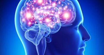 Winpocetyna efekty i działanie