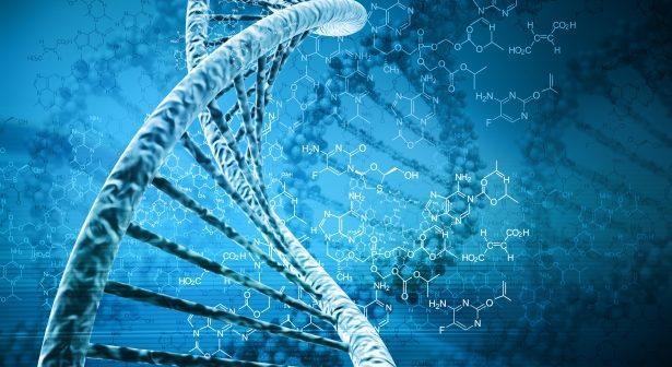 genetyka a tkanka tłuszczowa